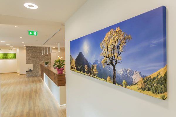 Bild einer schönen Landschaft in der Zahnarztpraxis Kaiser in Sauerlach.